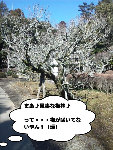120219_104128.jpg